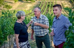 Chvilka klidu ve vinohradu